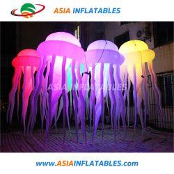 파티 장식, LED 라이츠 세일(Sale)이 있는 불그라이피시