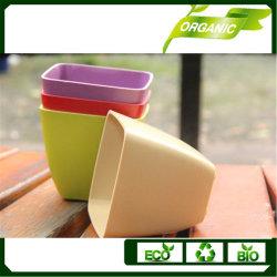 Maceta biodegradable de fibra de bambú con Eco