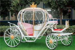 Luxuxwagen der baby-Prinzessin-Horse Pumpkin Wedding Aschenputtel