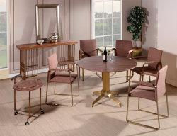 1995 Fabbrica Oem Design Morden Fashion Furniture Dining Tablet Sedia Per Salotto Casa