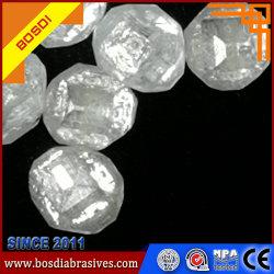 다이아몬드 돌의 Embryoid 바디