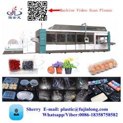 machine de formage machine de thermoformage sous vide le bac pour la vente machine de thermoformage Wenzhou pour rendre les couvercles de PP boîte à lunch de décisions