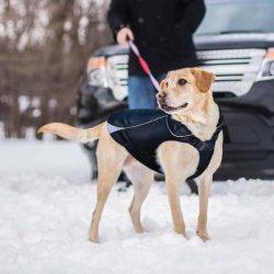 防水犬のジャケット、柔らかい冬の羊毛によって並べられる犬のコート