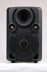 Shinco 12 van de Professionele van het Karretje Bluetooth Duim Spreker van de Karaoke