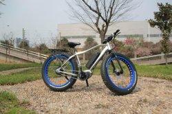 2017 4.0 polegadas pneu gordura 500W 48V Novo Design da unidade central eléctrica da bateria do vaso de peças de bicicletas de aluguer de Kits de motores