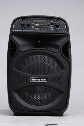 Shinco 6.5 van de Karaoke Duim Spreker van Partable Bluetooth van de Openlucht