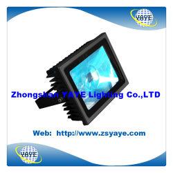 Yaye 18 Ce/RoHS 승인 가장 새로운 디자인 30W/40W/50W LED 갱도 빛/LED 플러드 빛 IP65