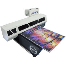APEX планшетный УФ СВЕТОДИОД6090 принтер