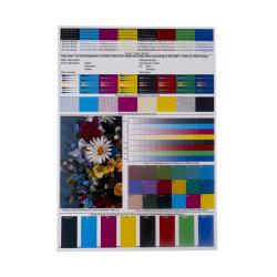 A4 300 Microrn wei?er Tintenstrahl Belüftung-Plastikblatt für die Herstellung der Karten