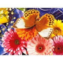 De Diamant die van het Borduurwerk van de Diamant van de Kunst van de vlinder DIY Dlh1006 schilderen