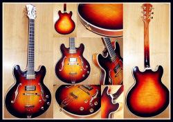 솔리드 우드가 있는 일렉트릭 재즈 기타(YZ-25s)