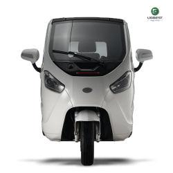 Betaalbare 2-zits Smart Car EEC-certificaat Mini elektrische auto