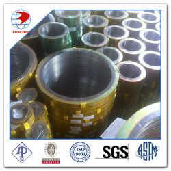 De spiraalvormige BuitenRing van Cs van de Ring Ss304 van de Pakking van de Wond Verzegelende Grafiet Binnen