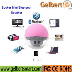 Großhandelssaugventil-beweglicher Multimedia-Minilautsprecher Whith Freisprechtelefon