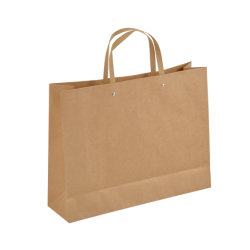 Uitstekende kwaliteit Aangepaste het Winkelen van het Document van Kraftpapier van het Handvat van het Ontwerp Zak met Afgedrukt Embleem