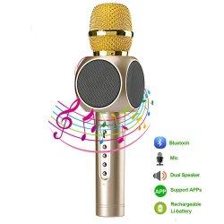 Microfono senza fili di karaoke del condensatore dello studio con l'altoparlante 5W per il partito di KTV
