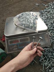 Commerce de gros de la tête parapluie Roofing clou galvanisé avec la rondelle de 1kg emballage