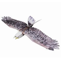 RC Avion EPP Modèle Plan biomimétique Eagle Wingspan 1430mm lent Flyer Modèle d'avion avec moteur servo ESC