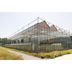 Vidro de Venlo Multi-Span emissões para a agricultura