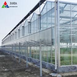 식물성 토마토 고추를 위한 Aquaponics /Hydroponics/Irrigation 시스템을%s 가진 광고 방송 또는 농업 또는 산업 경제 다중 경간 플로트 유리 Venlo 녹색 집