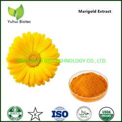 10% 20% 80% natürliches Ringelblume-Auszug-Lutein-Puder