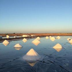 HDPE Geomembrana LLDPE Sol Salt Pond revestimiento