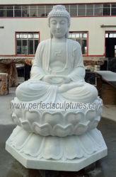 Scultura di scultura di marmo di Sakyamuni Buddha della statua di pietra intagliata tempiale a grandezza naturale che si siede sul loto (SY-T152)