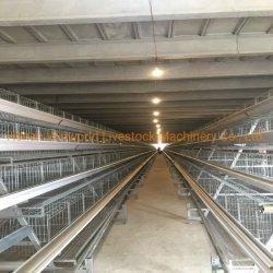 닭 감금소 또는 닭 층 건전지 감금소 자동적인 기르는 장비 가축은 감금한다