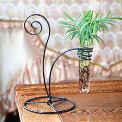 금속 회전 홀더 수중식물 테스트 튜브 꽃병 홈 가든 장식으로 꾸며져 있습니다