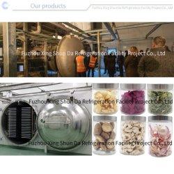 Secador de congelamento sanitárias máquina de processamento de alimentos para fins agrícolas/Dairy/vegetais/frutas/Snack/Arroz/Fazenda/carne