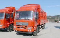 変速機モデルが付いている4*2 Dongfengの貨物トラックの格子トラックは絶食する