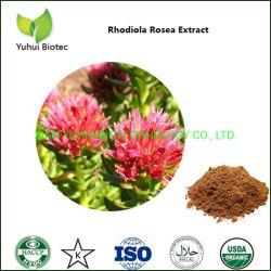 Rhodiola Rosea natural en polvo extracto 1%, 2%, 3%, 4% Rosavin por HPLC.