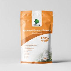アルギン酸18%が付いている水溶性の黒色火薬の有機肥料の海藻エキス