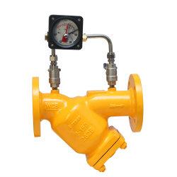 차별 압력 계기 가스를 위한 산업 연료 가스 필터를 가진 ANSI 무쇠 Y 스트레이너