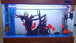Luz LED resistente al agua del acuario Pecera Underwater Decoración de acuarios
