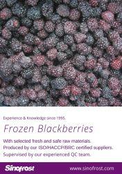 Nova cultura, IQF Blackberry, Blackberry congelada, IQF cultivadas Amoras, congeladas cultivadas Amoras, IQF Amoras, congeladas Amoras, ISO/HACCP/BRC