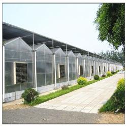 Una estructura simple Bastidor de acero galvanizado de policarbonato PC/PE Po Film/vidrio Multi Span Tomate /Fresa/Pepino y pimientos invernaderos para jardín/comerciales.