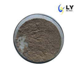 Vente Longyu 100% naturel extrait de thé vert