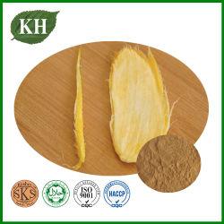 중량 제어 제품 Mango 시드 추출/체중 감량 에이전트