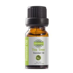 Goede prestaties Speciale geur Groene Plant Tea Tree essentiële olie Voor Acne Scars