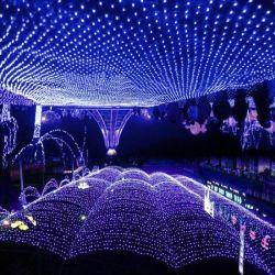 Rede de LED acende as luzes decorativas Jardim Casamento colorida decoração do Teto