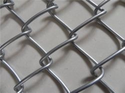 9 게이지 5 * 5cm 6피트 갈바니화된 다이아몬드 메쉬 와이어 체인 Fence Fence Fence 연결