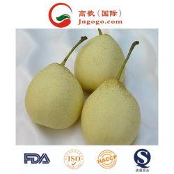 Verse Chinese (ISO, HACCP, GLOBALGAP) Peer Ya/Asia/Huang Guan