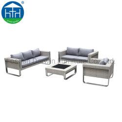 Les meubles en rotin artificielle canapé de loisirs de plein air en osier Eco défini