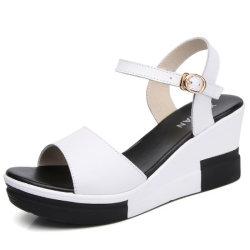 فصل صيف نساء يوتّد جلد أحذية خفاف عرضيّ ([إكسل-4])