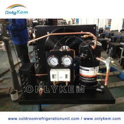 Kühlraum Tiefkühlraum Gebrauchte Copeland-Kondensierende Einheit