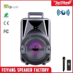 Feiyang 8-inch draagbare Bluetooth-miniluidspreker