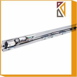 Frame Es200 Vidro corrediço automática com motor Dunkermotoren do Trinco da Porta
