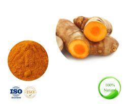 La alta calidad Tumeric puro en polvo Extracto de raíz con 95% de la curcumina