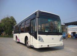 Les autobus scolaires 50-73
